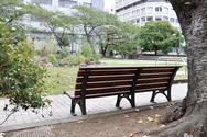 越前堀児童公園 ほか (中央区)の写真