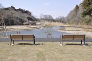うるいど自然公園 (市原市)の写真